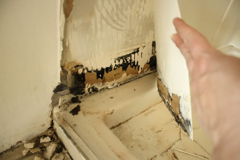 black-mold-behind-drywall